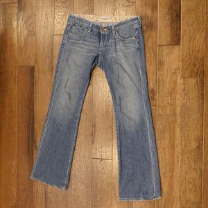 Big Star | Sweet | jeans | bootcut | 31R